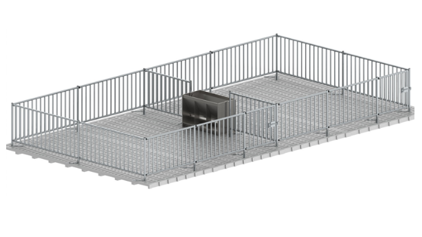 Cage for fattening piglets from metal fence