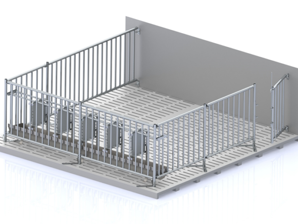 Cage for the maintenance of pregnant sows 0.74 m